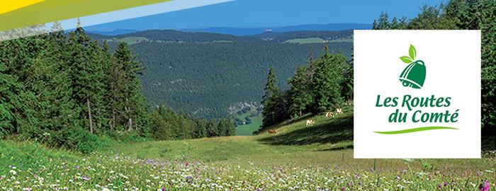 Les Routes du Comté - Col de la Faucille